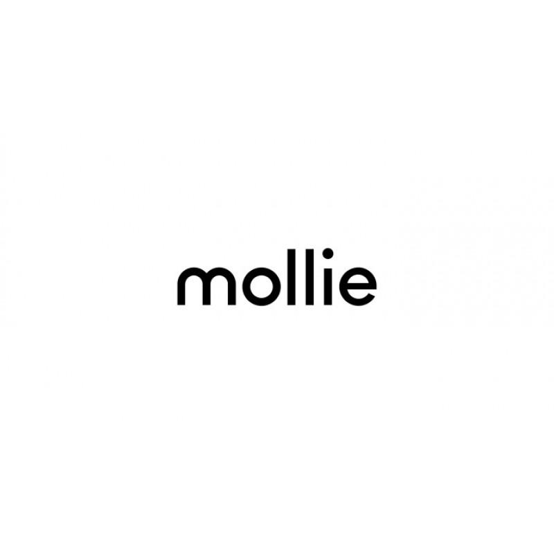Mollie - платежный шлюз