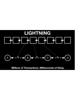 Bitcoin Lightning Network Payment Gateway, foto - 1