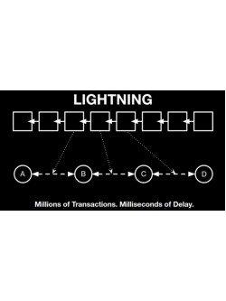 Bitcoin Lightning Network Payment Gateway, foto - 1